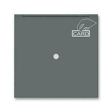 ABB 3559M-A00700 61 Neo Kryt spínače kartového, s čirým průzorem