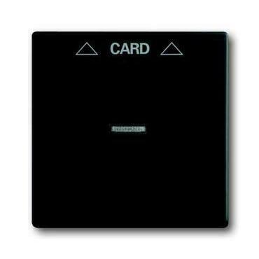 ABB 2CKA001710A3905 Future Kryt spínače kartového, s čirým průzorem