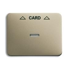 Kryt spínače kartového Alpha, čirý průzor, potisk, palladium